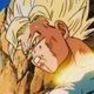 Goku-sama1